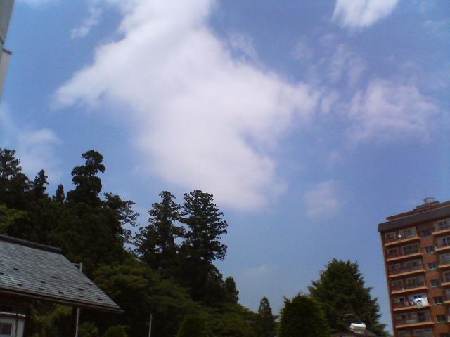 2008-夏 108.jpg
